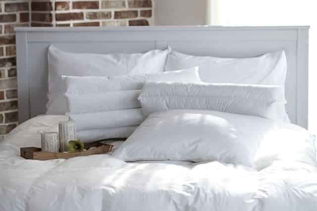 Pillow Protector Washable Wet Pillows